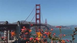 San Francisco City Tour - California - U S A