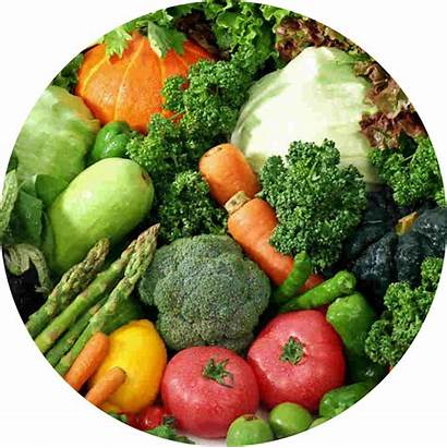 Vegetables Circle Organic Foods Vegetable Sprouts Asparagus