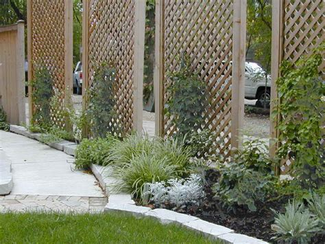 Outdoor Privacy Screen Ideas Galvanized Tubs