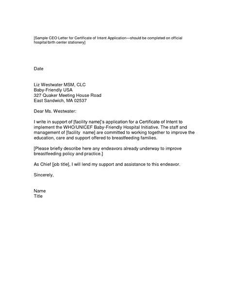 job application letter  intent