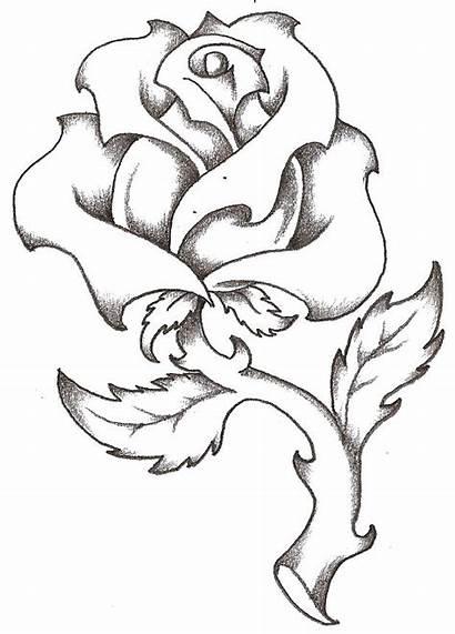 Tattoos Rose Roses Drawings Hearts Drawing Tattoo