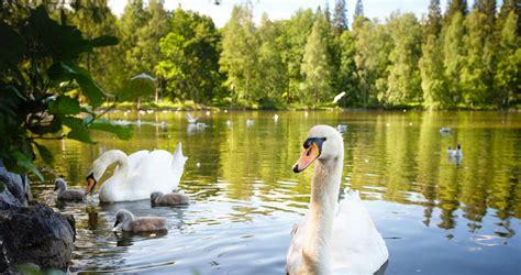 top nature attractions haemeenlinna