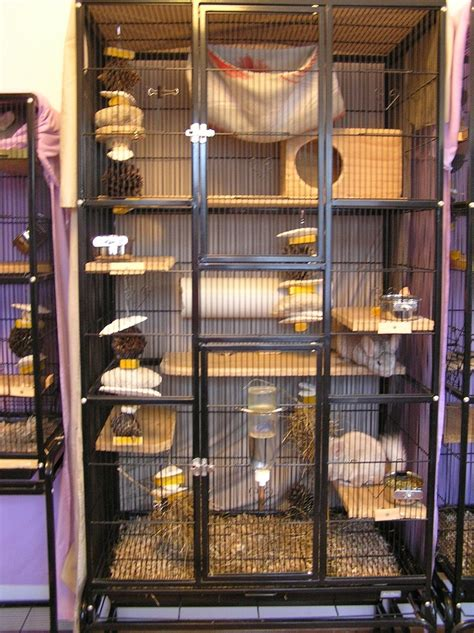sugar glider cage awesome chinchilla cages imgkid com the image kid