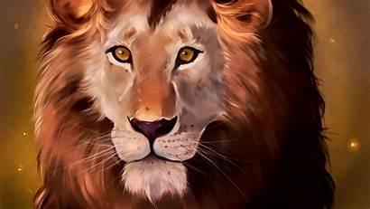 Lion Predator King Beasts Glance Background Widescreen