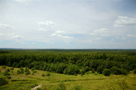images landscape free images landscape tree nature forest horizon marsh mountain cloud sky field