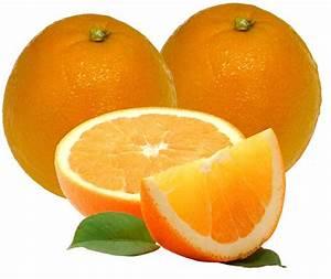 Marmelade D Oranges Amères : marmelade d 39 oranges am res vente en ligne ~ Farleysfitness.com Idées de Décoration