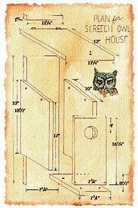 Bird Box Plans - WoodWorking Projects & Plans