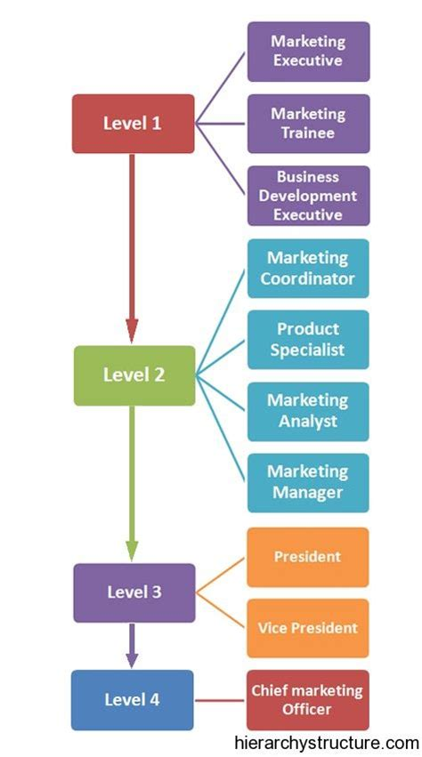 images  career hierarchy  pinterest ibm
