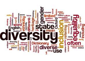 what does the word diversity to you