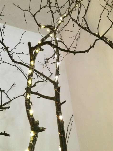 DIY tree branch feature for my kitchen   Homeware Ireland