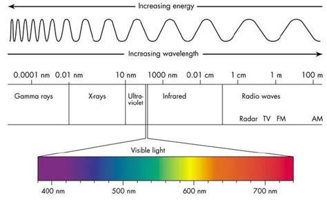 which color has the shortest wavelength which color of visible light has the shortest wav