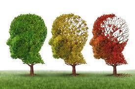 Grupo do Bem Estar e da Felicidade : #Alzheimer #Demência ...