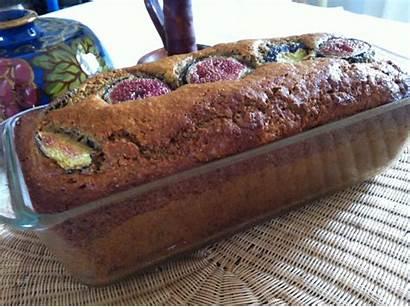 Fig Cake Easy Moist Recipe Spelt Cakes