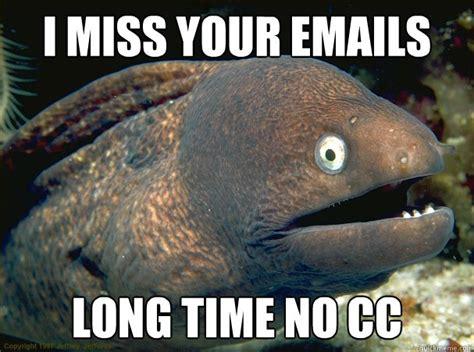 Cc Memes - i miss your emails long time no cc bad joke eel quickmeme