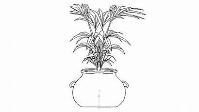 Plant Pot Drawing Plants Indoor Autocad Bushes