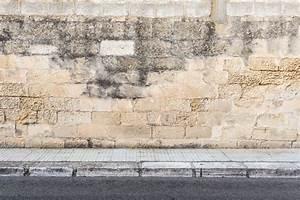 Schwarzer Schimmel Wie Entfernen Mauerwerk : schimmel im mauerwerk schimmel im mauerwerk so gehen sie ~ Michelbontemps.com Haus und Dekorationen
