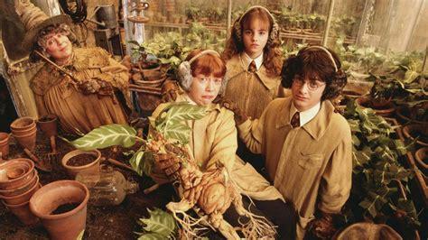 La Película Harry Potter Y La Cámara Secreta