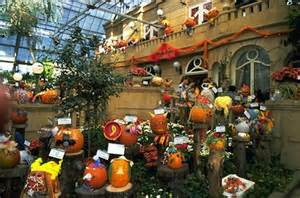 Botanical Gardens Washington Dc by Attention All Thrill Seekers How About Celebrating