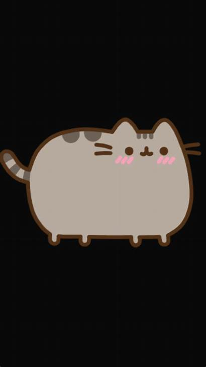 Pusheen Cat Wallpapers Cats Kawaii Drawing Background