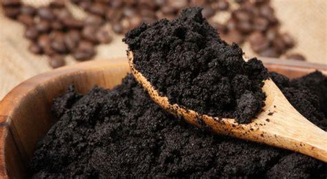 facons insolites de reutiliser le marc de cafe bio