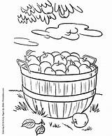 Coloring Thanksgiving Pages Dinner Basket Sheets Harvest Fall Apples Food Apple Activity Feast Bible Foods Drawing Activities Colouring Printable Rabbit sketch template