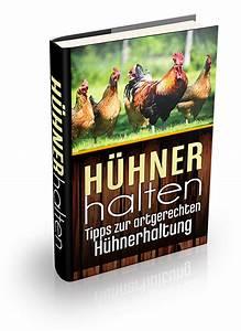 Hühnerhaltung Im Wohngebiet : h hnerstall kaufen top 5 h hnerst lle im vergleich und ratgeber ~ Eleganceandgraceweddings.com Haus und Dekorationen