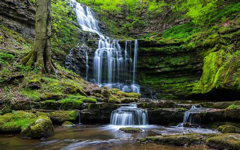 Nature Free Wallpaper by Waterfall Nature Forest Wallpapers Hd Desktop And