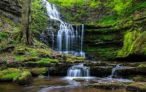 Waterfall, Nature, Forest, Wallpapers, Hd, Desktop, And, Mobile, Backgrounds