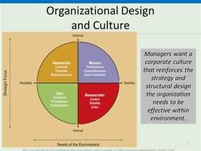 Organizational Culture and Design