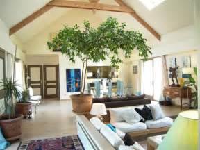 photo maison usa moderne et lumineuse avec jardin deco With tapis chambre bébé avec plantes fleuries d appartement
