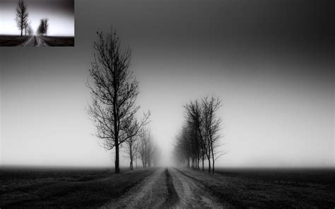 black white landscape fog wallpapers hd desktop