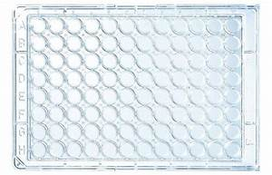 96 Well Uv Microplates