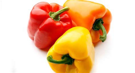 3 fr recettes de cuisine comment bien conserver mes légumes prima