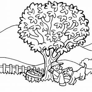 Dessiner Son Jardin : comment dessiner son jardin 8 nature coloriage nature ~ Melissatoandfro.com Idées de Décoration