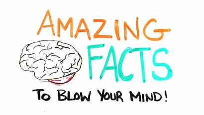 Facts Amazing Mind Clipart Blow Brain Human