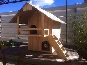 Cabane Pour Chat Exterieur Pas Cher : maison pour chat ext rieur ventana blog ~ Farleysfitness.com Idées de Décoration