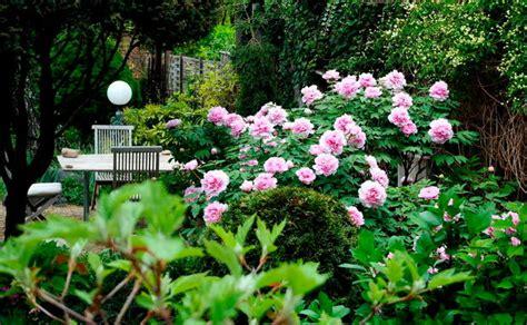 10 Tipps Für Den Garten, Die Du Kennen Musst! • Womanat