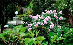 Tipps Für Den Garten : 10 tipps f r den garten die du kennen musst woman at ~ Markanthonyermac.com Haus und Dekorationen