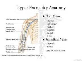 watch more like cephalic vein deep vein thrombosis, Cephalic Vein