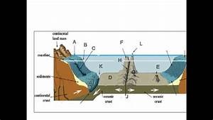 Ocean Floor Diagram To Label Fresh Ocean Floor Topography