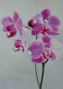 Violet Orchid Painting by Sharon Freeman - Violet Orchid ...
