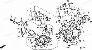Honda Atv 2000 Oem Parts Diagram For Cylinder Head