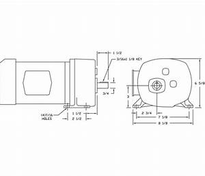 Dryer Motor Wiring Diagram 115v X603