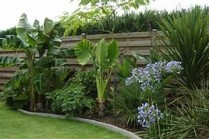 jardin exotique jardin pinterest jardin exotique With idee amenagement jardin paysager 16 massifs de roses mon jardin reve