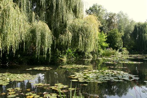 Jardins De Claude Monet Ouverture by File Giverny Jardin Monet 10 Jpg Wikimedia Commons