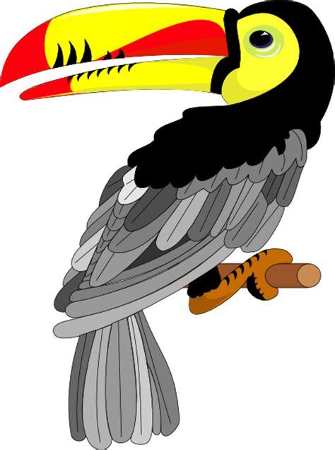 Toucan Clip Art At Vector Clip Art Online