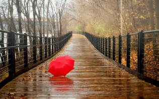 Image result for free image of rainy day