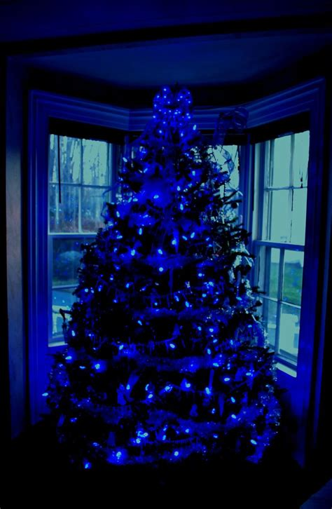 17 best ideas about blue christmas lights on pinterest