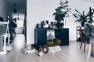 Hundehütte Für Drinnen : diy hundeh tte f r die wohnung selber bauen inklusive ~ Michelbontemps.com Haus und Dekorationen