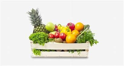 Basket Vegetable Fruits Vegetables Transparent Pngio Nicepng